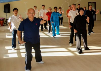 Tai Chi Seminar GM Yang Jun Klausenburg 2014